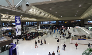 Vietnamese woman, forced to stay overnight, escapes from Japanese airport