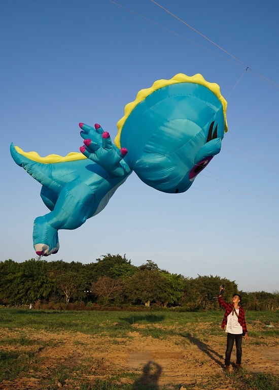 Colorful kites ascend over Vietnams southern sky in first few days of the Lunar New Year - 4