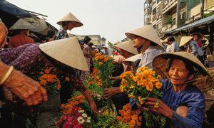 1991 Mekong Delta Tet flower market blooms afresh