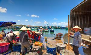 Vietnam targets $10 bln seafood export