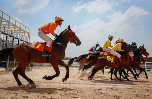 Da Nang mulls $200 million investment in horse-racing course