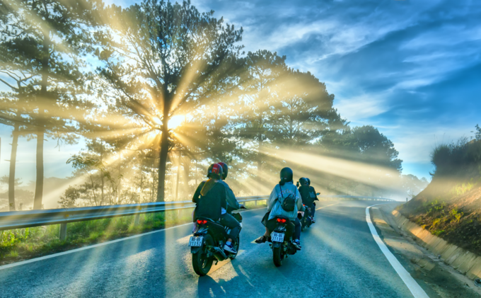 Motorcyclists drive on road through pine forests with the rays of the sun in the early morning hours in Da Lat. Photo by Shutterstocks/Tonkin