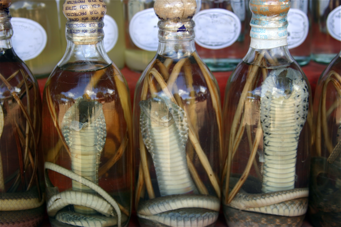 Cobra snake wine sells in Vietnam. Photo by Shutterstock/bumhills