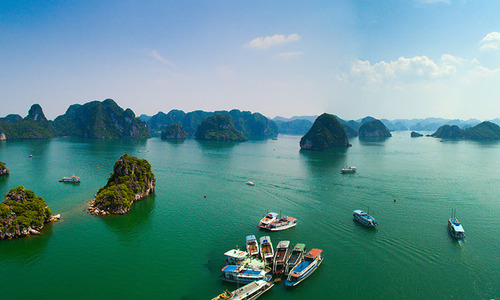 Japanese man dies after falling off cruise ship in Ha Long Bay
