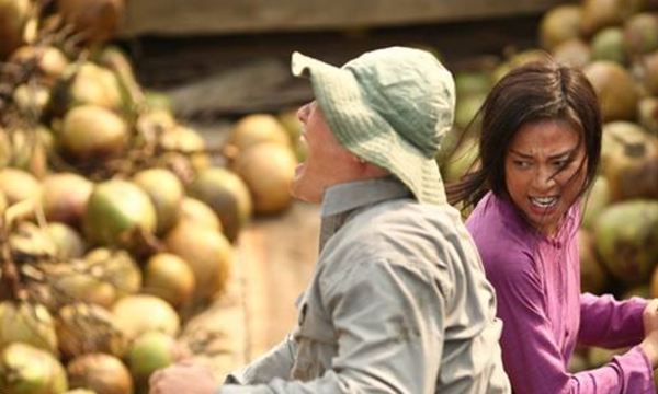 Vietnamese action flick Furie 27th in US box office