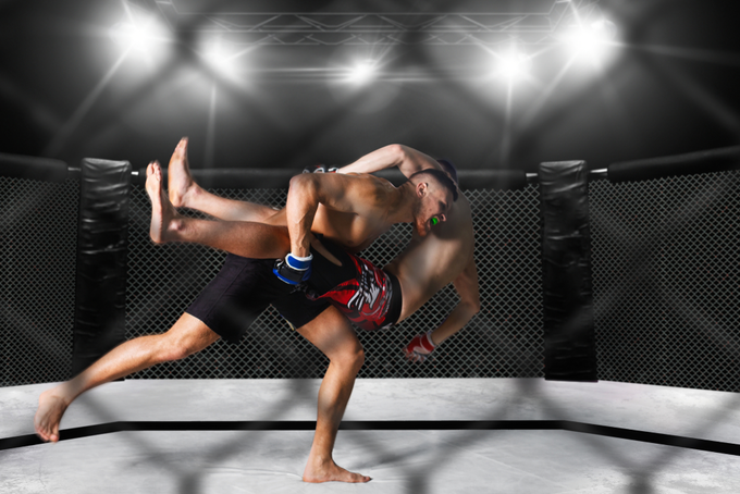 Major mixed martial arts events to make Vietnam debut