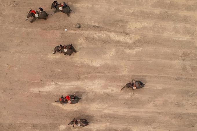 Mahouts racing their elephants during the Buon Don elephant festival inDak Lak.
