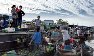 Cai Rang Market: a floating existence rooted deep in the soil