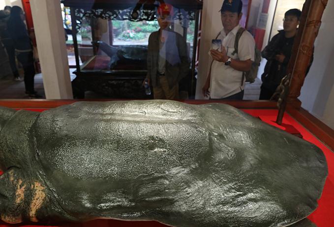 Vietnam's legendary giant turtle plastinated for life - 4