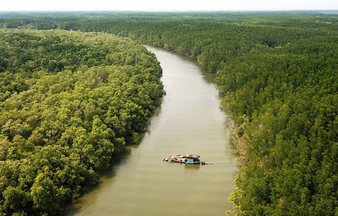 Couple lives off the grid in Saigons mangrove forest