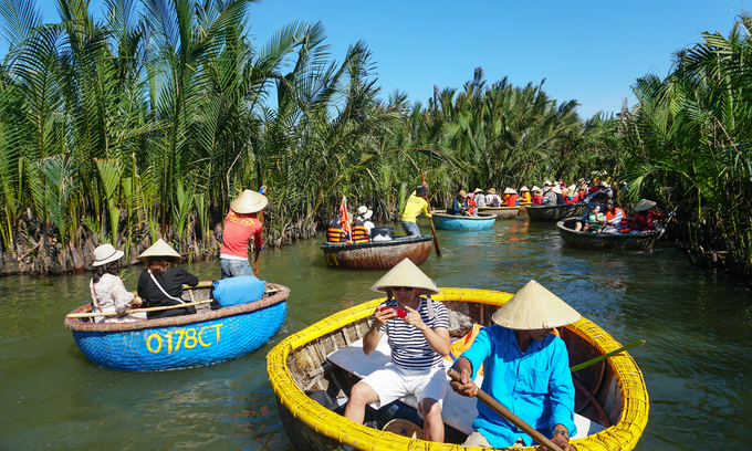 Tourists sail coracles at a mangrove forest in Hoi An in central Vietnam. Photo by VnExpress/Quynh Tran