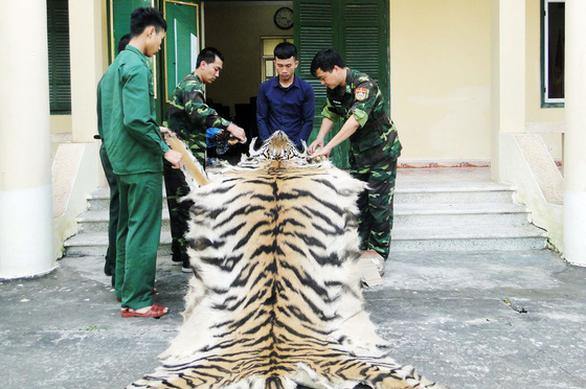 Vietnamese man arrested with tiger skin, bones on China border