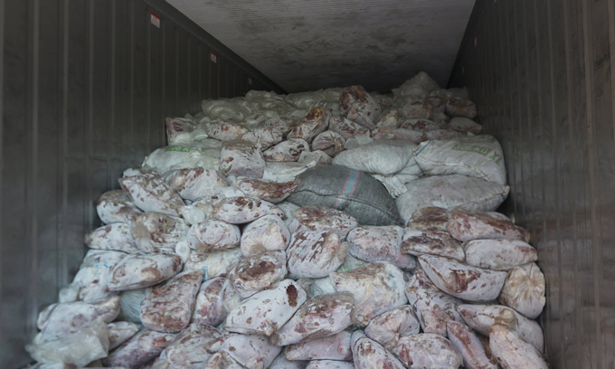 Singapore makes second huge seizure of pangolin scales bound for Vietnam