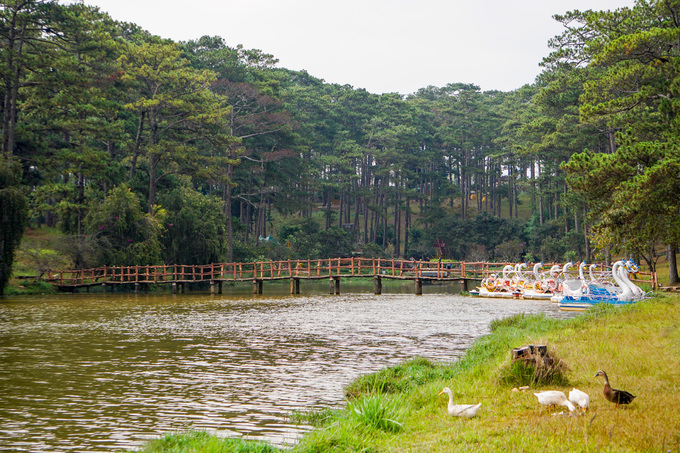 In Da Lat, a lake sighs over Shakespearean tragedies - 3