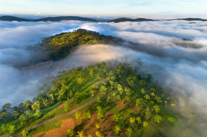 Thanks to year-round cool weather, Da Lat has become one of the top holiday destinations in Vietnam. Photo by Shutterstock/hoangchi