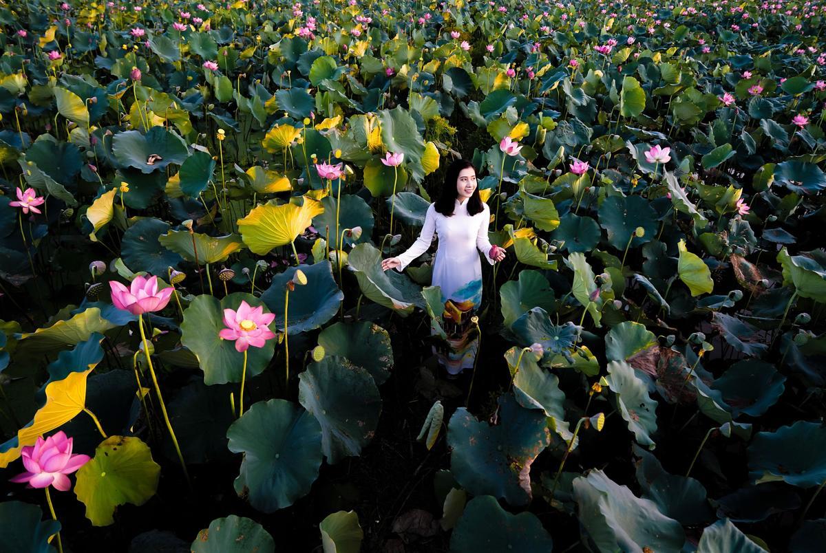 Summer flowers brighten up an imperial landscape in Vietnam