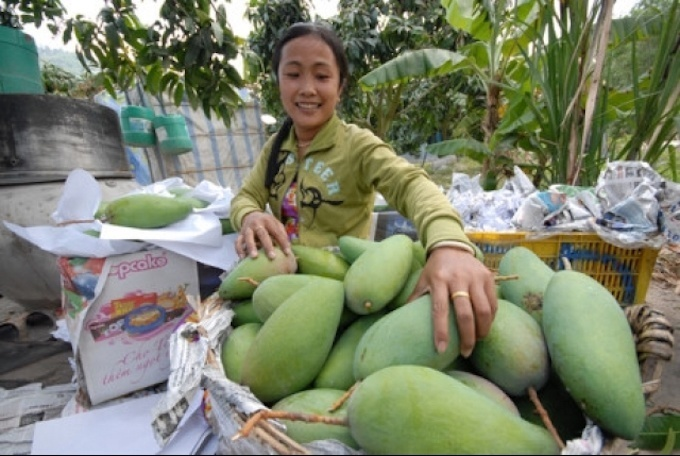 China remains crucial as Vietnam expands fruit exports