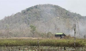 Four Vietnamese caught poaching in Cambodia