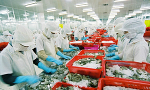 Japanese conglomerate acquires 35 percent of Vietnamese shrimp company