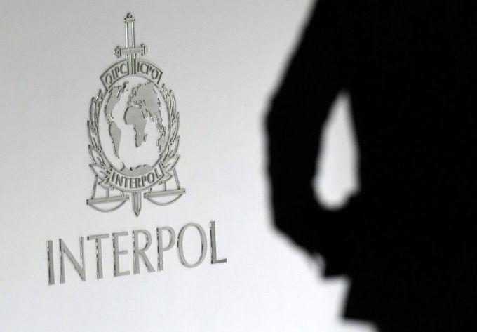 50 children saved after police bust paedophile website: Interpol