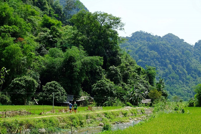 Vietnam jungle marathon introduces breathtaking rural vistas - 1