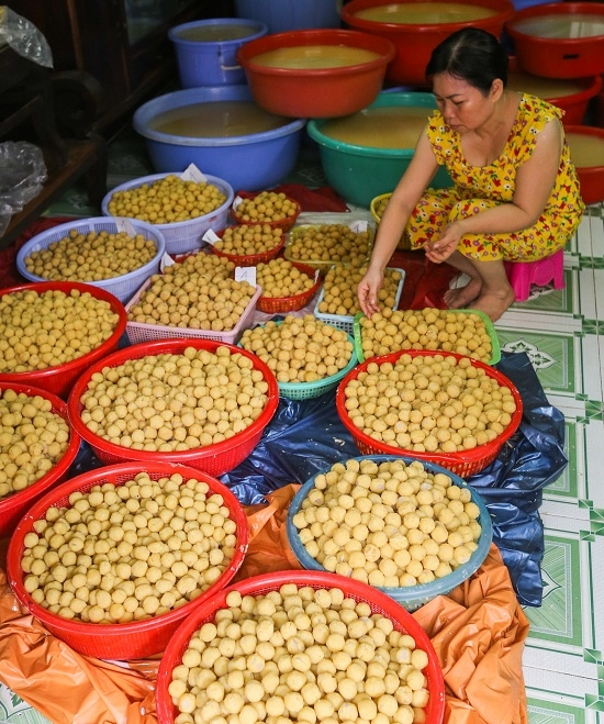 Saigon hamlet makes rice cakes for cleansing body and spirit - 2