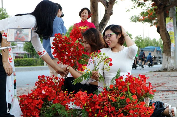 Red blossoms light up northern Vietnam city - 7