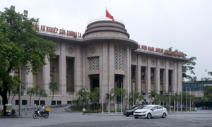 Vietnam fiscal deficit to remain high: Fitch