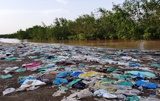 Garbage is seen near a mangrove forest in Do Son District, Hai Phong. Photo by VnExpress/Giang Chinh.