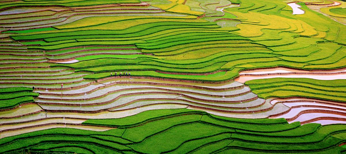 Scintillating sight: water logged fields in Vietnam's northern highlands  (EDITED)