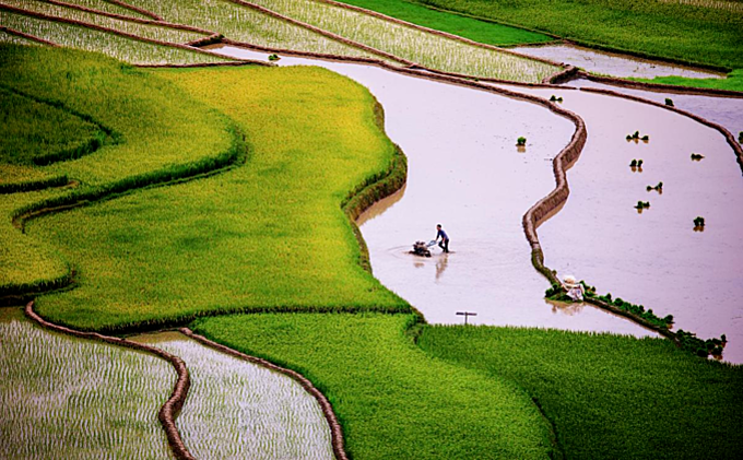 Scintillating sight: water logged fields in Vietnam's northern highlands  (EDITED) - 1