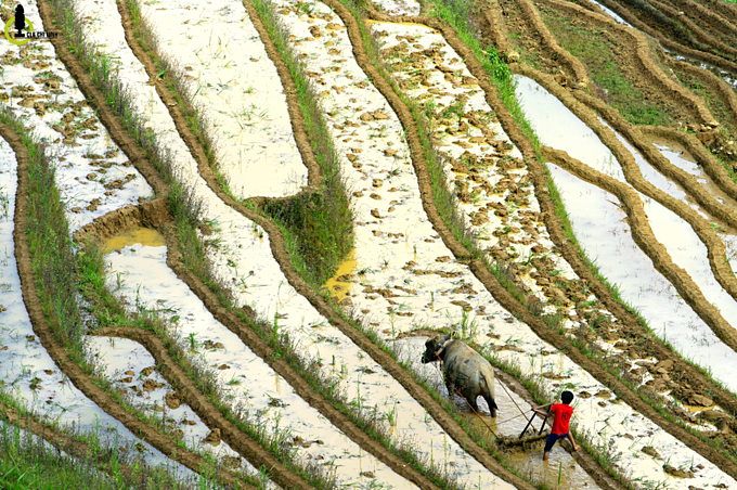 Scintillating sight: water logged fields in Vietnam's northern highlands  (EDITED) - 5