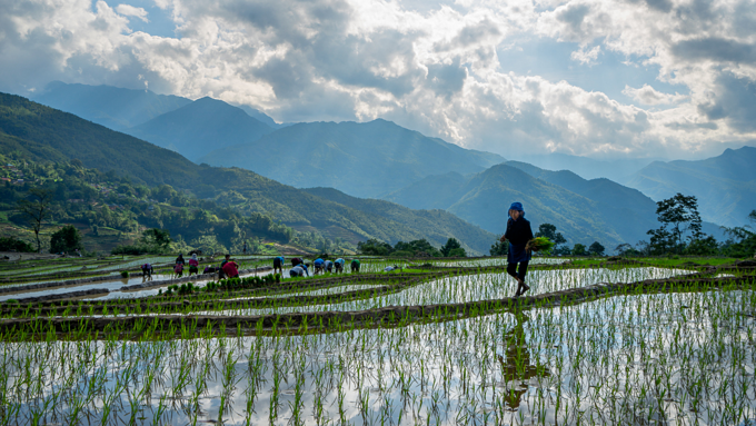 Scintillating sight: water logged fields in Vietnam's northern highlands  (EDITED) - 7