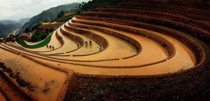 Scintillating sight: waterlogged fields in Vietnam's northern highlands - 4
