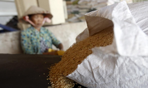Rice exports shrink in first five months