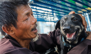 Homeless man dedicates life to rescuing dogs slated for slaughter