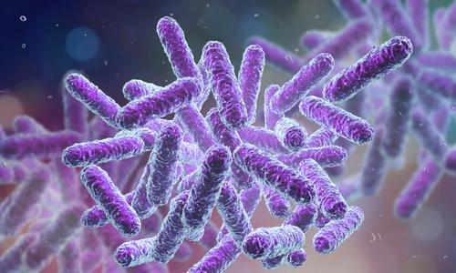 Vietnam hospitals a hotspot of antibiotic-resistant bacteria