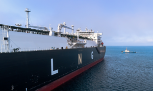 Vietnam first LNG terminal likely on stream by 2022