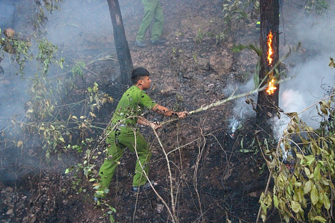 Central Vietnam tackles forest fires on war footing - 3
