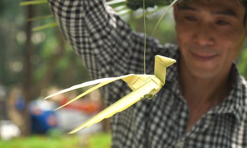 The playful art of folding coconut leaves in Hanoi