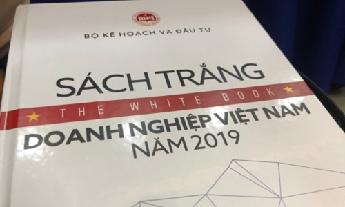 Vietnam launches first White Book on businesses