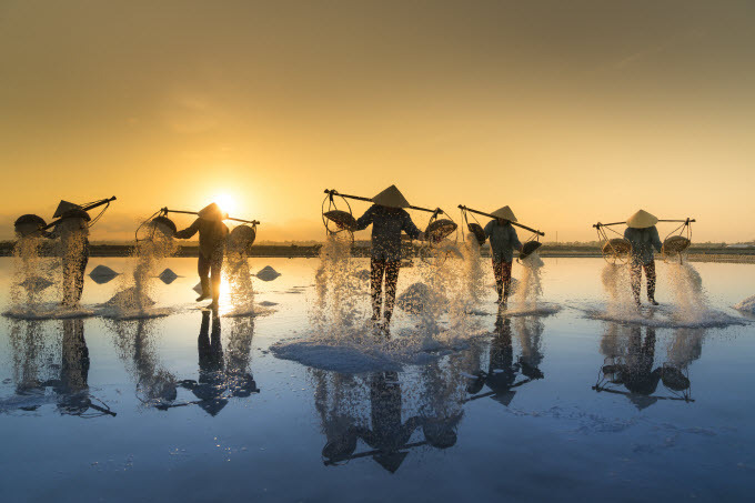 Go explore long-standing salt fields in central Vietnam - 3