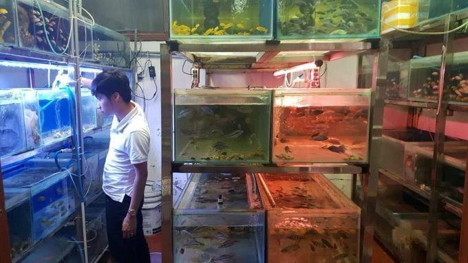 A fish shop in Yen Phu Village. Photo by VnExpress/Minh Huong.