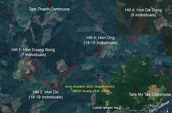 Four mountains where the gray-shanked douc langurs live in Tam My Tay Commune, Quang Nam Province. Photo by Google maps.