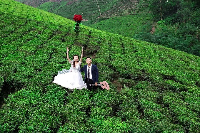 Vietnam's finest tea producer teems with other natural delights - 2