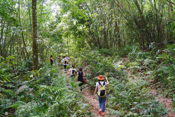 Ba Vi National Park facilitates proximity to nature - 1