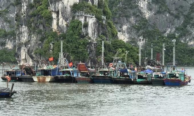 Ha Long Bay bans sailing as storm Wipha near