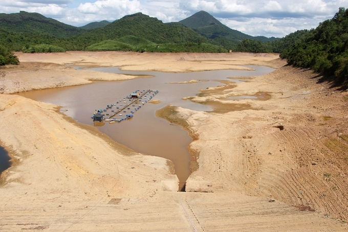Drought puts central Vietnam irrigation lakes out to pasture - 3