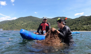 Da Nang clears litter from coral reefs