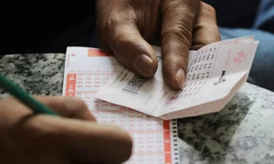 Lottery company profit plummets in H1
